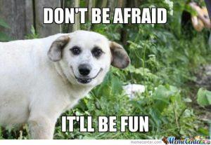 scary-dog_o_1049655