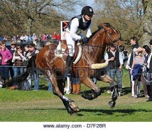 michael-jung-ger-riding-la-biosthetique-sam-fbw-during-the-cross-country-d7f28r